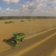 Three Combines Working on the Large Wheat Field - VideoHive Item for Sale