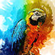 Sketch Art Painting Photoshop Action - GraphicRiver Item for Sale