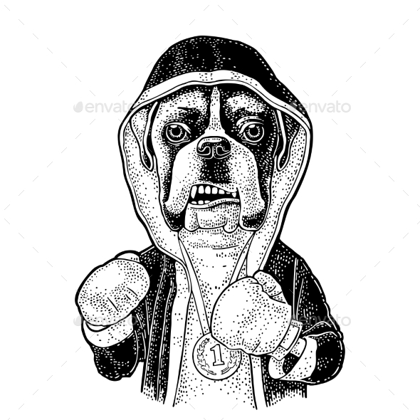 Dog Boxer Dressed in Human Robe and Gloves - Animals Characters