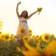 Cute Child Girl in Yellow Garden of Sunflowers Sunlight in Summer. Lifestyle Beautiful Sunset Little - VideoHive Item for Sale