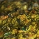 Cooking Spain Paella with Rice, Seafood Mussels, Shrimps and Vegetables in Pan . Process Preparation - VideoHive Item for Sale