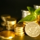 Golden Coins and Green Leaf of Sprout on Black Background. Success of Finance Business - VideoHive Item for Sale