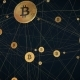 Bitcoin Wired Network  - VideoHive Item for Sale