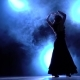 Flamenco. Dancer in the Dark Room Performs Elegant Movements with Her Hands - VideoHive Item for Sale