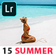 Summer Travel Blogger Presets - GraphicRiver Item for Sale
