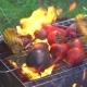 Cook Prepares Vegetables on the Fire on the Grill - VideoHive Item for Sale