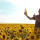 Man Farmer Exploring the Field with Sunflowers.  Video. Lifestyle Man Farmer Hand Lifestyle Hol - VideoHive Item for Sale