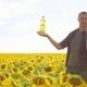 Man Farmer Hand Lifestyle Hold Bottle of Sunflower Oil the Field at Sunset. Sunflower Oil Improves - VideoHive Item for Sale