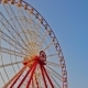 Gorky Central Park of Culture and Leisure in Kharkov  Hyperlapse, Ukraine - VideoHive Item for Sale