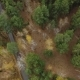 Forest and Highway Road Aerial View - VideoHive Item for Sale
