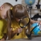 A Beautiful Girl with a Boy Through the Magnifying Glass Looks at the Globe in the Classroom. On a - VideoHive Item for Sale