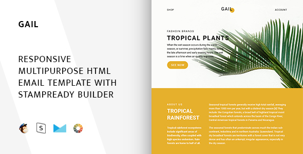 Gail – Responsive Email + StampReady Builder & Mailchimp - Email Templates Marketing