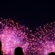 People Looking at the Fireworks in the Night Sky, a Colorful Fireworks in Honor of the Holiday - VideoHive Item for Sale