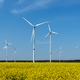 Wind power plants in a field of blooming oilseed rape  - PhotoDune Item for Sale