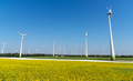 Yellow flourishing oilseed rape and lots of wind energy plants  - PhotoDune Item for Sale