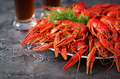 Crayfish. Red boiled crawfishes on table in rustic style, closeu - PhotoDune Item for Sale