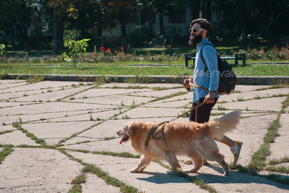 Man walking his dog in the park - Stock Photo - Images