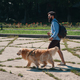 Man walking his dog in the park - PhotoDune Item for Sale