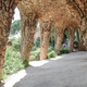 Stone columns in Park Guell, Barcelona - PhotoDune Item for Sale