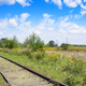 railroad in field - PhotoDune Item for Sale