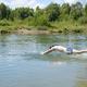 man diving - PhotoDune Item for Sale