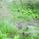 The Soldier Approaches the Stream, Puts the Machine Gun, Washed Himself and Goes on - VideoHive Item for Sale