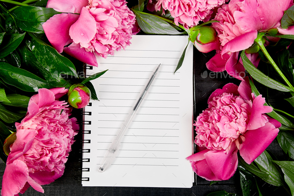 Beautiful pink peony flowers on black background with note - Stock Photo - Images