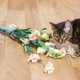 Cat breed toyger dropped and broken glass vase of flowers. - PhotoDune Item for Sale