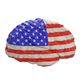USA. Flag on Human brain. 3D illustration. - PhotoDune Item for Sale