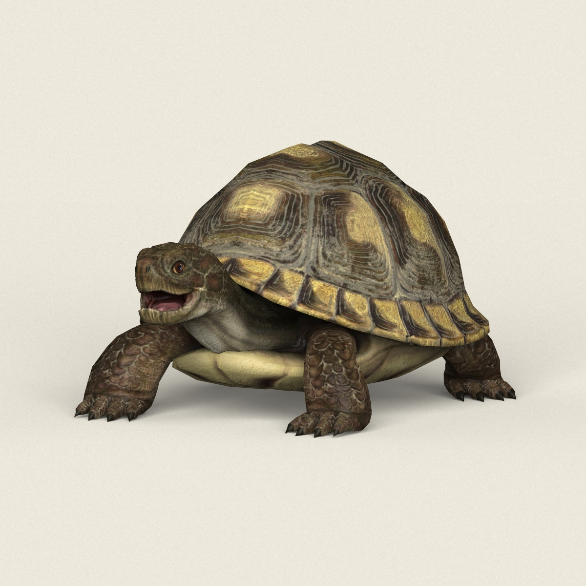 Game Ready Tortoise by plantworld3d | 3DOcean