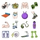 Fitness and Attributes Cartoon Icons in Set
