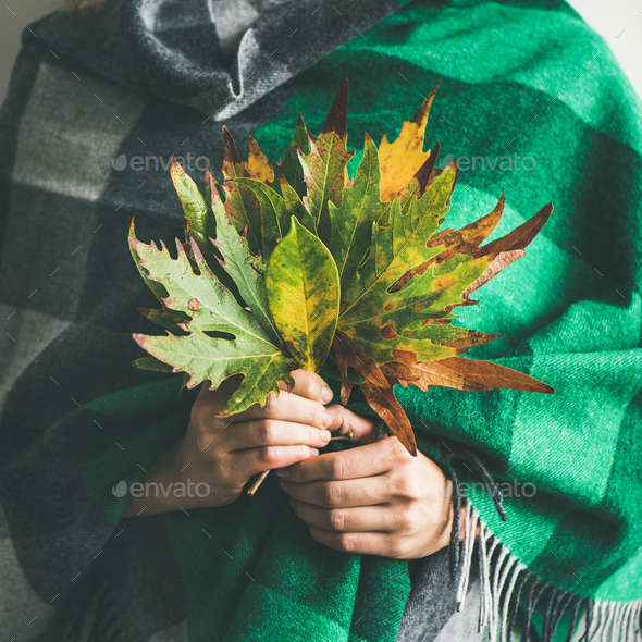 Woman in scarf or blanket with Autumn leaves, square crop - Stock Photo - Images
