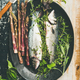 Raw uncooked sea bass fish with herbs and asparagus - PhotoDune Item for Sale