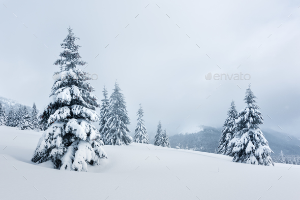 Fantastic winter landscape - Stock Photo - Images