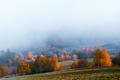 Amazing scene on autumn mountains - PhotoDune Item for Sale