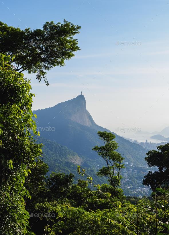 Rio de Janeiro in Brazil - Stock Photo - Images