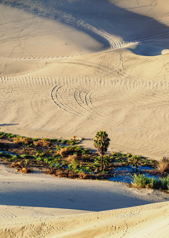 Huacachina in Peru - Stock Photo - Images