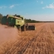 Aerial View of a Combine Harvester Working in a Field at Sunset - VideoHive Item for Sale