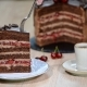 Piece of Cherry Chocolate Cake - VideoHive Item for Sale
