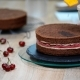 Preparation of Chocolate Cake with Cherries - VideoHive Item for Sale