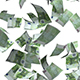 Falling Money Euro Bills - VideoHive Item for Sale