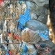 Stacks of Plastic Litter in the Open Air - VideoHive Item for Sale