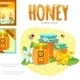 Cartoon Beekeeping Infographic Concept - GraphicRiver Item for Sale