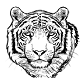 TigerAudio