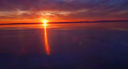 Turkey- Salt Lake