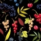 Vector Seamless Pattern with Berries and Leaves - GraphicRiver Item for Sale