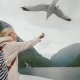 A Woman Is Feeding a Gull That Flies By. Trust and Tame the Concept. Journey Through the Fjords of - VideoHive Item for Sale
