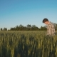Father Meets His Son, Embraces and They Rejoicing From Good Harvest - VideoHive Item for Sale