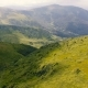 Aerial Shot of the Boundless Carpathian Uplands with Salad Lawns in Summer - VideoHive Item for Sale