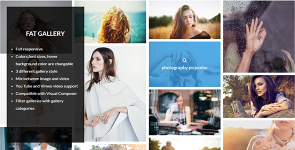 FAT Image Gallery For Wordpress - CodeCanyon Item for Sale